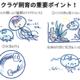 クラゲの飼育講座