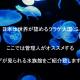 水族館紹介