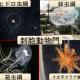 クラゲの特徴【箱虫綱】